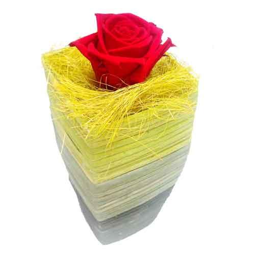 Livrer des roses domicile pour la saint valentin pour for Livrer une rose