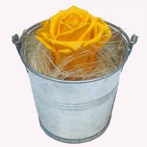 stabiliser les fleurs