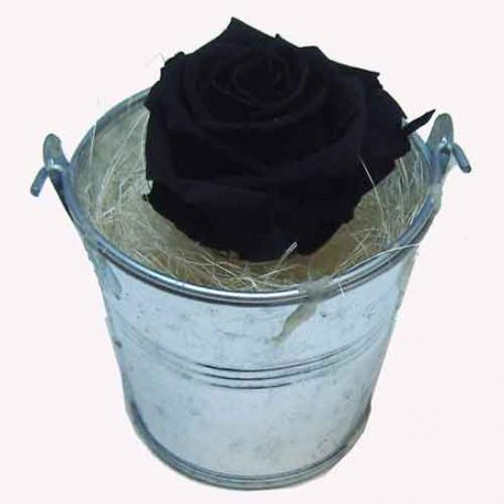 livraison dans la france de roses noires