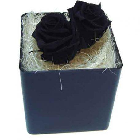 roses noires stabilisées