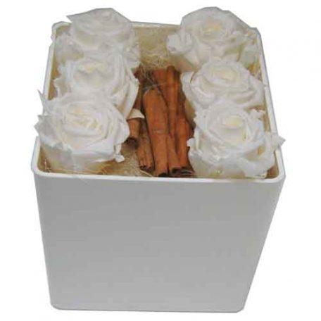 livraison de roses